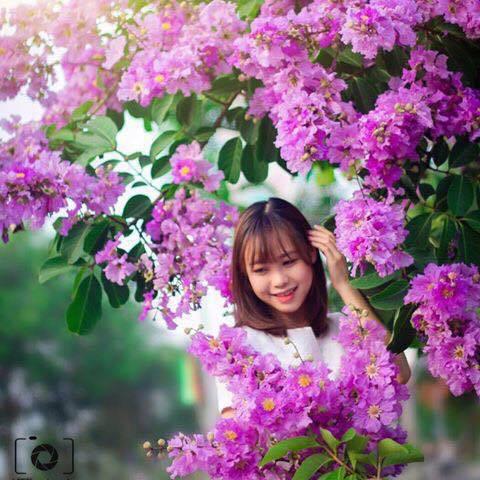 Hà Hoàng Giang